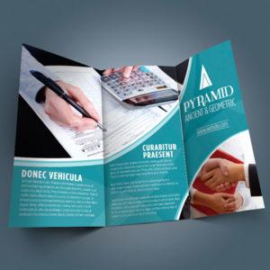 Large Flyer Brochure
