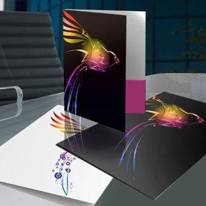 Large Presentation Folder